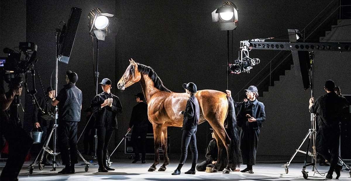 gruppo di persone e un cavallo su un palcoscenico in allestimento