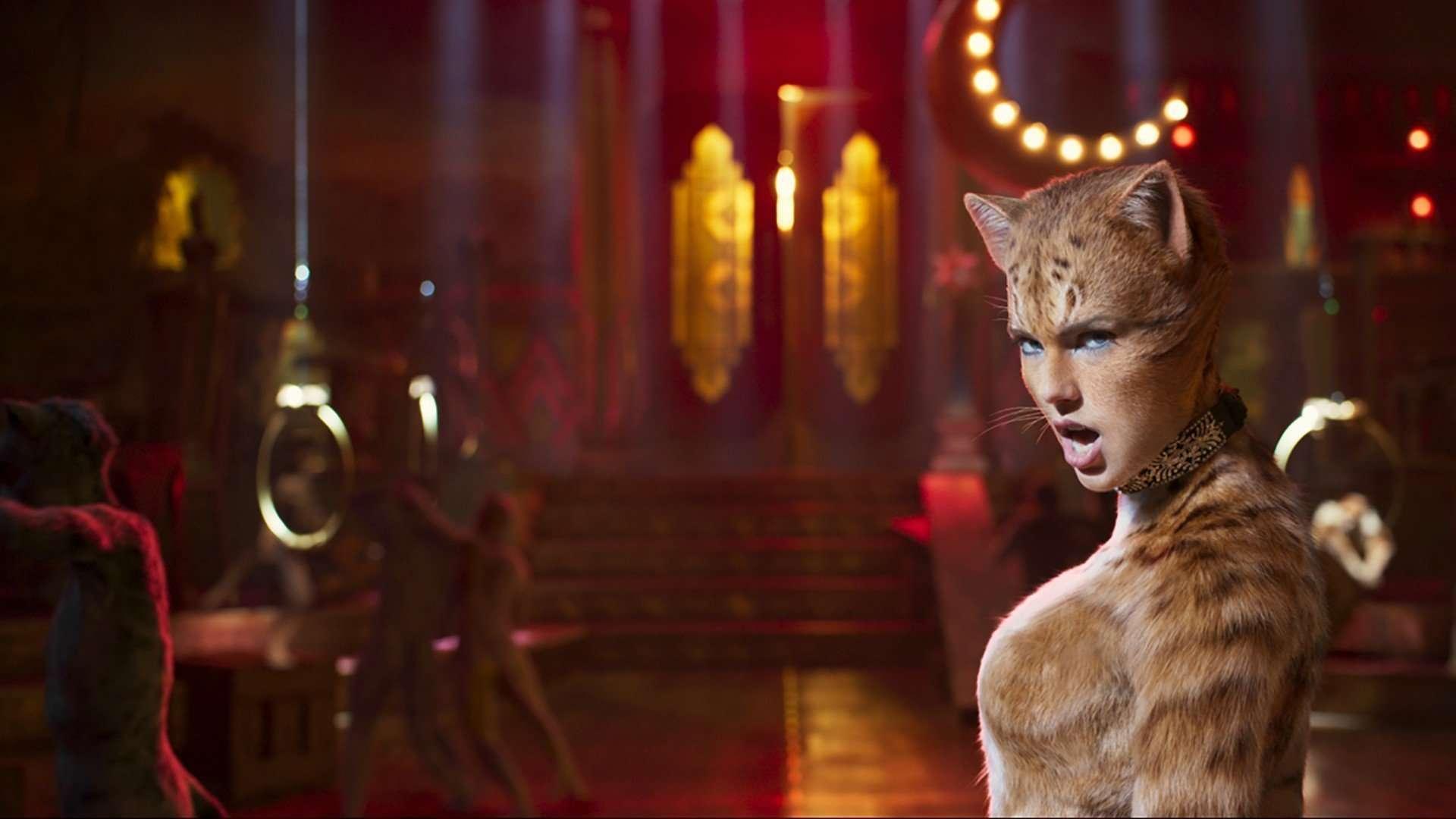 Taylor Swift Film Cats
